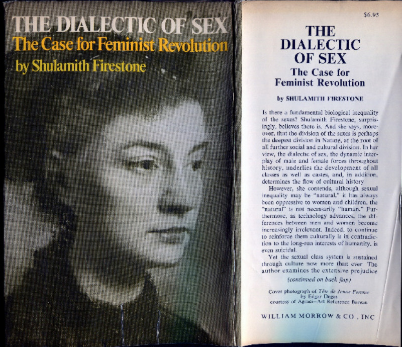 Dialectic of sex case for feminist revolution